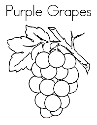 Full Size Of Coloring Pagecaptivating Grape Page Purple Grapes Pages Large