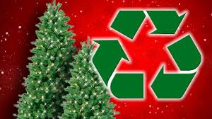 Silver Tip Christmas Tree Los Angeles by 100 Christmas Tree Recycle Recycling Your Christmas Tree