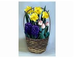 bulb garden gift basket