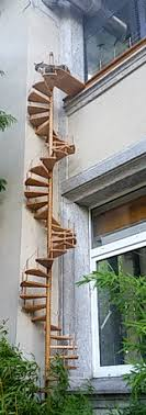cat stairs cat stairs gif find on giphy