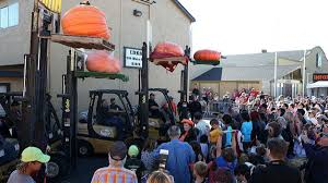 Half Moon Bay Pumpkin Festival Winner by Mega Pumpkin Weigh Off In Half Moon Bay Nbc Southern California