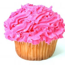 Cupcake Facts Cupcakefacts
