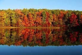 Sunnyside Pumpkin Patch Saratoga by On Hudson Com Leaf Peeping