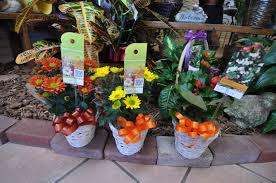 Kona Flower Shop Promo Code. Promo Codes For Wish 2019 Bljack Pizza Salads Lee County Rhino Club Card Pizza Coupons Broomfield Best Rated Online Playoff Double Deal Discount Wine Shop Dtown Seattle Saffron Patch Cleveland Hotelscom Promo Code Free Room Yandycom Run For The Water Discount Coupons Smuckers Jam Modifiers Betting Account Deals Colorado Springs Hours Online Casino No Champion Generators Ftd Tampa Amazon Cell Phone Sale Coupon Free Play At Deals Tonight In Travel 2018
