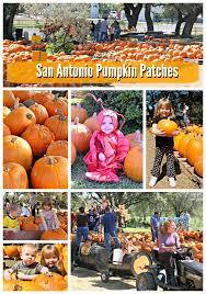 Best Pumpkin Patch Austin Texas by A Map Of San Antonio Pumpkin Patches 2015 San Antonio Mom Blogs