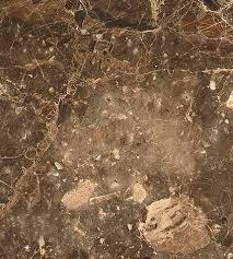 indoor tile floor marble polished breccia paradiso furrer