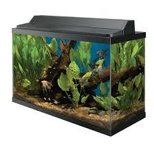 Petco 29 Gallon Aquarium Deluxe Kit $69 99 $120OFF Slickdeals