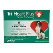 heartgard for cats fluoxetine hydrochloride capsules for dogs cats generic brand may