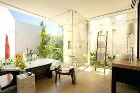 Best Bathroom Pot Plants by Classy Artificial Plants For Bathrooms Best Bathroom Plants Ideas