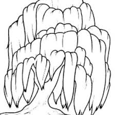 Willow Tree Coloring Pages For Kids Free Printable