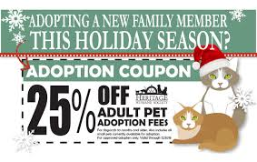 Holiday Adoption Coupon - Heritage Humane Amazon Promo Codes And Coupons Take 10 Off Your First Every Major Retailers Cutoff Dates For Guaranteed Untitled Enterprise Coupons Promo Codes November 2019 25 Off Cafe Press Deals 1tb Adata Xpg Sx8200 Pro M2 Pcie Nvme Ssds Slickdealsnet Homeless Animals Awareness Week Coupon Heritage Humane The Best Discounts On Amazons Fire Tv Stick 4k Belizean Kitchen Belko Dicko Pages Directory Ibotta Referral Code Get 20 In Bonuses Ipsnap Never Forget A