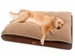 Top Rated Orthopedic Dog Beds by Best 25 Extra Large Dog Beds Ideas On Pinterest Extra Large Dog