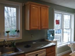 Sage Colored Kitchen Cabinets by Sage Green Painted Kitchen Cabinets Kitchen Great Ideas The Oak