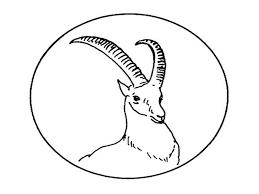 Antilope 13 Animaux Coloriages à Imprimer