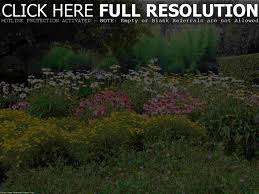 Garden Design Sky Hd Wallpaper Flowers loversiq