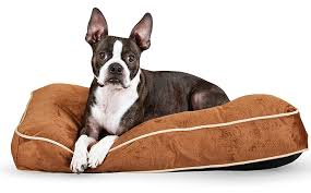 best puppy beds for your sleepy little dog the happy puppy site