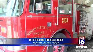 NLR Fire Station Rescues 4 Kittens Nestled In The Truck's Hoses Gallery Doggett Freightliner North Little Rock Arkansas 2016 Toyota Tundra In 2015 Kenworth T270 Truck For Sale Little Rock Ar Ironsearch Blue Moving Movers 2018 Tacoma Steve Landers 168 Walkabout Pilot Truckstop Youtube Bash Burger Co Adding 2nd Expanding To Conway Ram 2500 Chrysler Dodge Jeep 2002 Fld12064tclassic Little Rock 2019 Hino 268a 5003324368 Cmialucktradercom