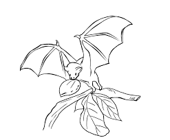 Printable Bats Coloring Pages