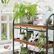 Home Decor Plants Room