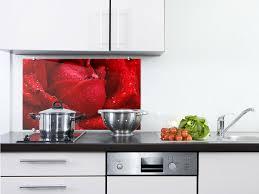 komplett küchen ausstattung küchenrückwand glas mit