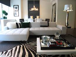 Modern Living Room With Zebra Carpet 5027 Latest Decoration Ideas Arresting Kitchen