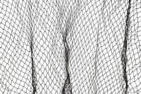 A Dark Green Fishing Net Against A White Background Stock