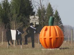 Pumpkin Farms In West Michigan by Home Geers Farms