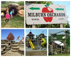 Milburn Orchards Big BackYard Family Fun + Summer Harvest Party ... 8 Best Pta Reflections Images On Pinterest Art Shows School And Best Backyard Playground Ever Youtube Diy Outdoor Banagrams Make Your Own Backyard Version Of This My Yard Goes Disney Hgtv Backyards Innovative Recycled Tiles And Child Proof Water Mcdonalds Happy Meal Playhouse Box Fort Drive Thru Prank Family Fun Modern Backyard Design For Experiences To Come New Nature Landscaping Designing A Images On Livingmore Family Fun Pride Pools Spas 17 Games For Diy Games