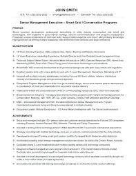 Cv Template For Senior Management Position Uk Resume Best Executive Samples Sample Technology Manager Templates Images