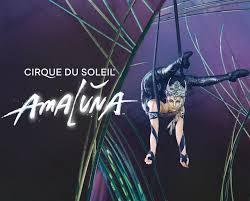 15% Off Cirque Du Soleil's AMALUNA Uniform Kit Bundle Mifc Professional Uniforms Custom Embroidery All Wear Girl Scout Shop Program Outdoor Gear How To Get Your Sainsburys Coupons Before You Shop The Childrens Place My Rewards Earn Save Figs Premium Scrubs Lab Coats Medical Apparel Save Money On Radio City Christmas Spectacular Tickets Promotions Img Academy Denver Nuggets Edition Jersey Reorder School For Girls Women Aeropostale Progressive Intertional Motorcycle Shows Motorcycleshowscom