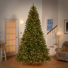12 Ft Christmas Tree Amazon by Amazon Com National Tree 9 Foot North Valley Spruce Tree With 700