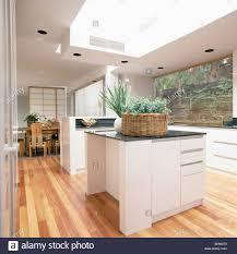 Moderne Weisse Küchen Bilder Korb Mit Zimmerpflanzen Auf Insel Gerät In Große Moderne