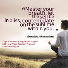 Quotes About Yoga Teacher Training