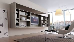 Stunning Wall Cabinets Living Room