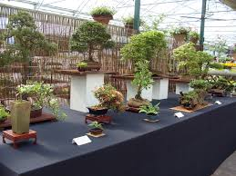 Show At Haskins Garden Centre, Copthorne, West Sussex | Bonsai ... Stanmer House Wedding Park Brighton Sussex Manor Barn Gardens Bexhill East Sussex Uk Stock Photo Royalty The English Wine Centre Oak And Green Lodge Best River Kate Toms Wedding Venue Berwick Hitchedcouk Wines Garden Canopies Walkways Community News Tates Of Bybrook Fordingbridge Plc Bonsai Groups Display At South Downs Gardens Great Dixter By Christopher Lloyd