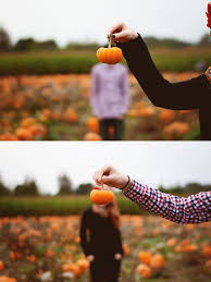 Pumpkin Patch Glendale Co by Best 25 Pumpkin Patch Photography Ideas On Pinterest Pumpkin