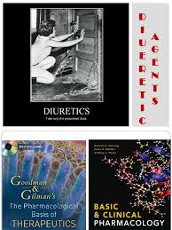 High Ceiling Diuretics Pdf by 14 Diuretik Pdf Drugs Pharmacology
