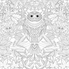 Secret Garden Marvelous Johanna Basford Coloring Book