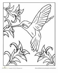 Free Printable Kid Coloring Page Of Bird
