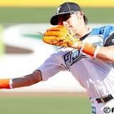 杉谷拳士, 北海道日本ハムファイターズ, 日本プロ野球, オーストラリアン・ベースボールリーグ