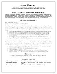 Information Technology Manager Resume Examples Objective