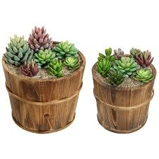 Set Of 2 Country Rustic Brown Wood Succulent Pots Planters Flower Buckets MyGiftR