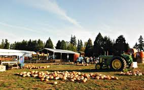 Pumpkin Patch Portland by Lee Farms Washington County Oregon Neat Pumpkin Patch With