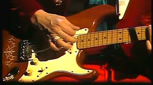 Stevie Ray Vaughan Lenny Riviera Paradise Live In Tokyo 1985