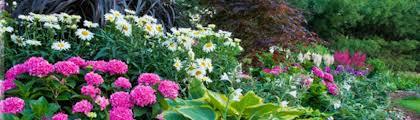 Knollwood Garden Center Garden & Landscape Supplies Reviews