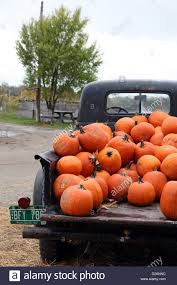 Pumpkins For Sale In An Old Pickup Truck Stock Photo: 53097000 - Alamy Used Trucks For Sale Near You Lifted Phoenix Az Cheap Semi By Owner Xtreme Towing Has New Truckss Old Or Automozeal Rat Rods Vs Mary Shelleys Frankenstein For Pap Kenworth Mission Pawn Home Facebook A Fire Fleet In El Cajon Turquoise N Rust 1952 Chevy Truck Tote Bag By Cheyanne Sexton Ford All Car Release Date 2019 20 Cars Little Rock Hot Springs Benton Ar Pictures Classic Big Rigs From The Golden Years Of Trucking And Haiku Iphone Photographer David Pillas