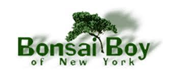 bonsai boy of new york coupons top deal 25 goodshop