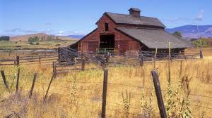 Images Of Bolet Wallpapers Old Barns - #SC 139 Best Barns Images On Pinterest Country Barns Roads 247 Old Stone 53 Lovely 752 Life 121 In Winter Paint With Kevin Barn Youtube 180 33 Coloring Book For Adults Adult Books 118 Photo Collection