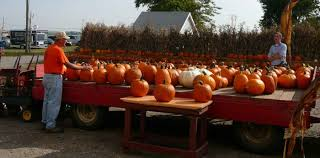 Pumpkin Patch Milwaukee by 7 Best Pumpkin Patches In St Louis In 2017