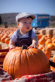 Pumpkin Patch San Fernando Valley 2015 by Upcoming Events And Things To Do In L A With Kids L A Parent